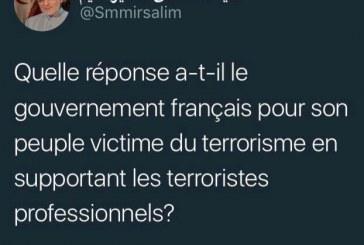 واکنش فرانسوی میرسلیم به نشست منافقین +تصویر