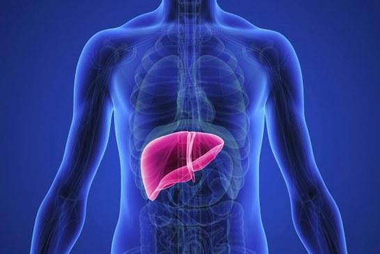 درمان کبد چرب با یک تغییر در رژیم غذایی