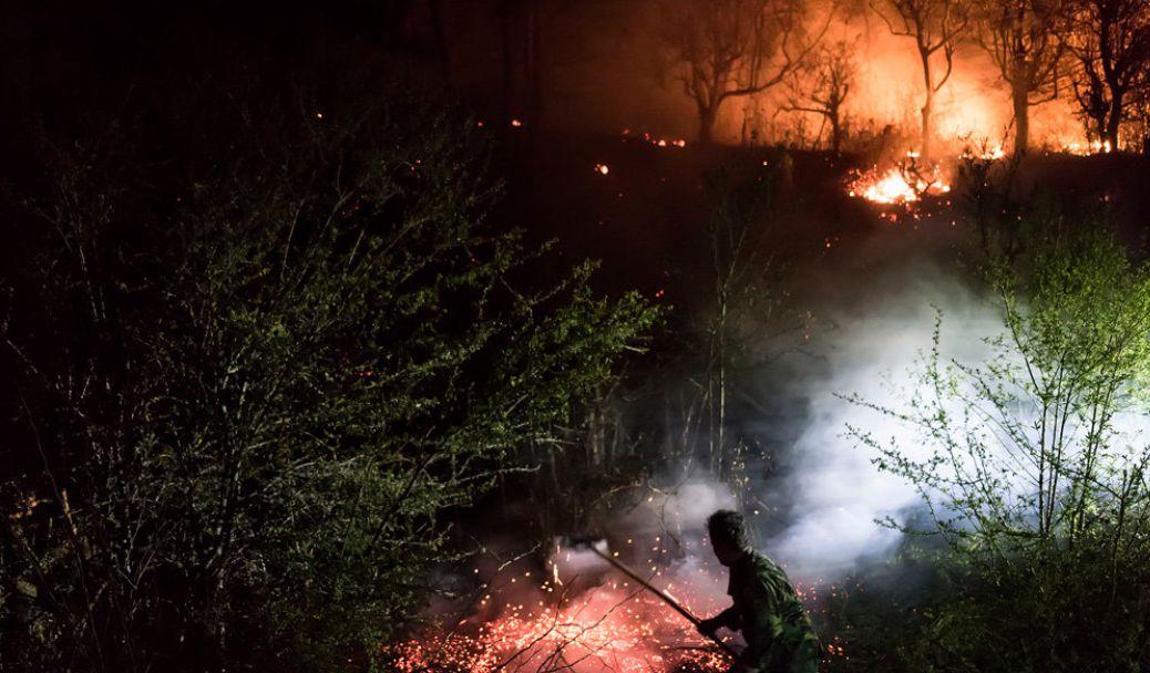 ۱۷۴ هکتار از جنگل ها و مراتع گیلان دچار حریق شد