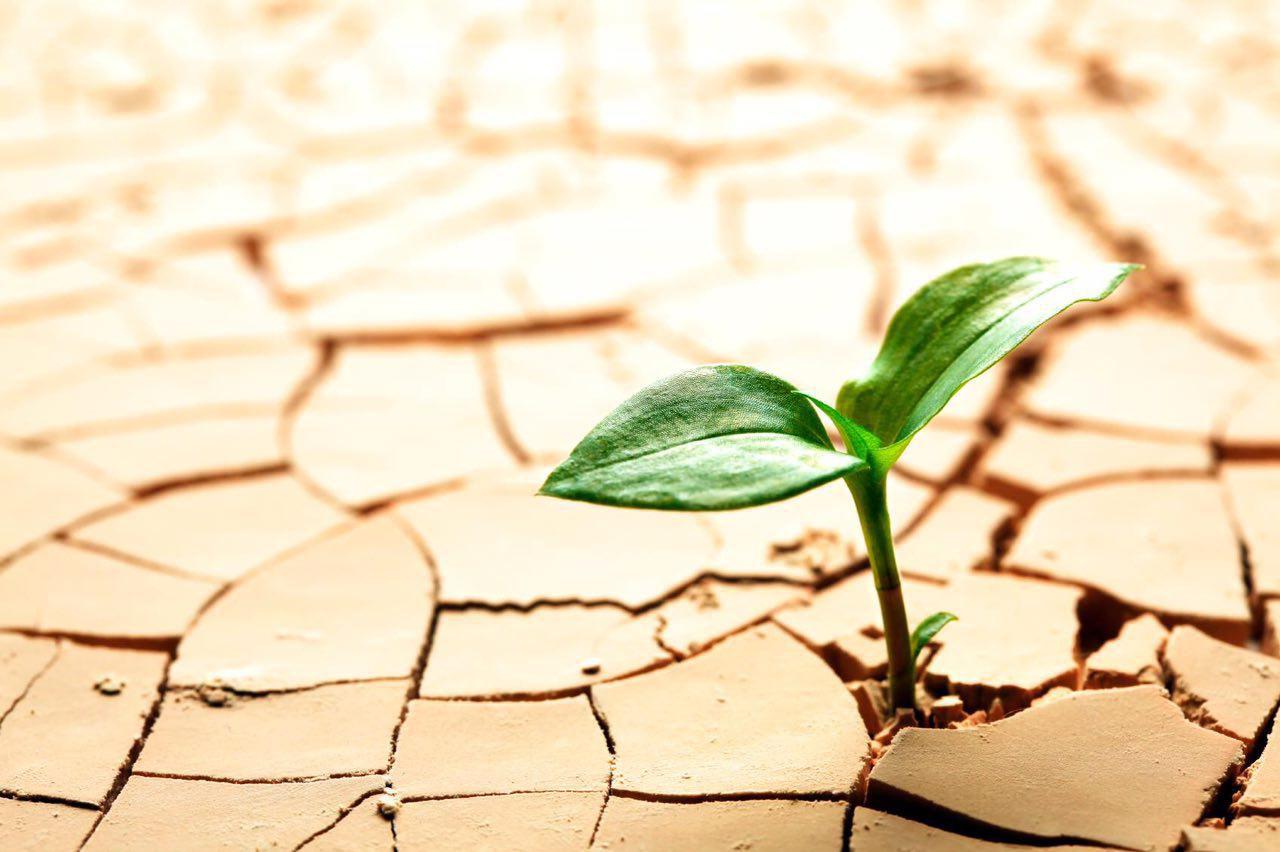 خشکسالی بیسابقه در مناطقی از کشور