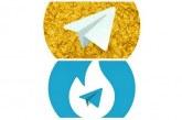 بیانیه پیام رسان های داخلی درباره هاتگرام