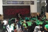 شیرخوارگان حسینی در فرانکفورت+تصویر