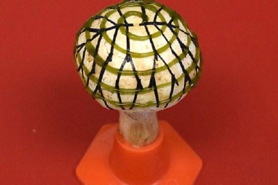 قارچی که الکتریسیته تولید میکند!