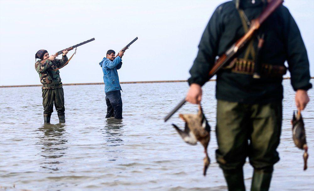 باز هم کابوس کشتار برای پرندگان مهاجر