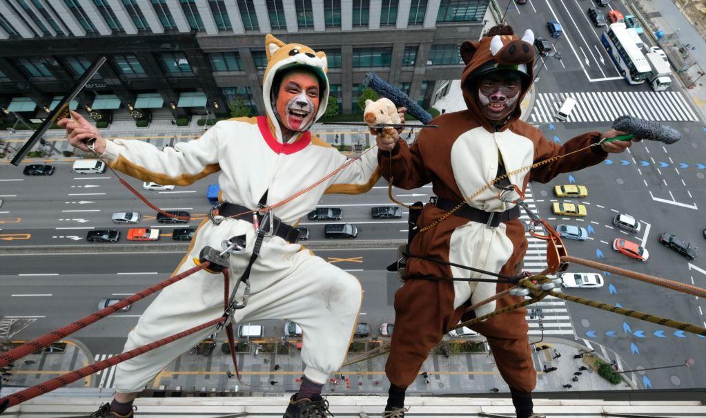 کارگران شیشه پاک کن برجها در ژاپن + تصویر