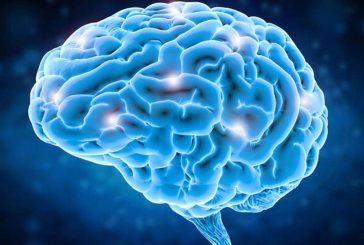 حضور طولانی مدت در فضا به مغز آسیب می زند