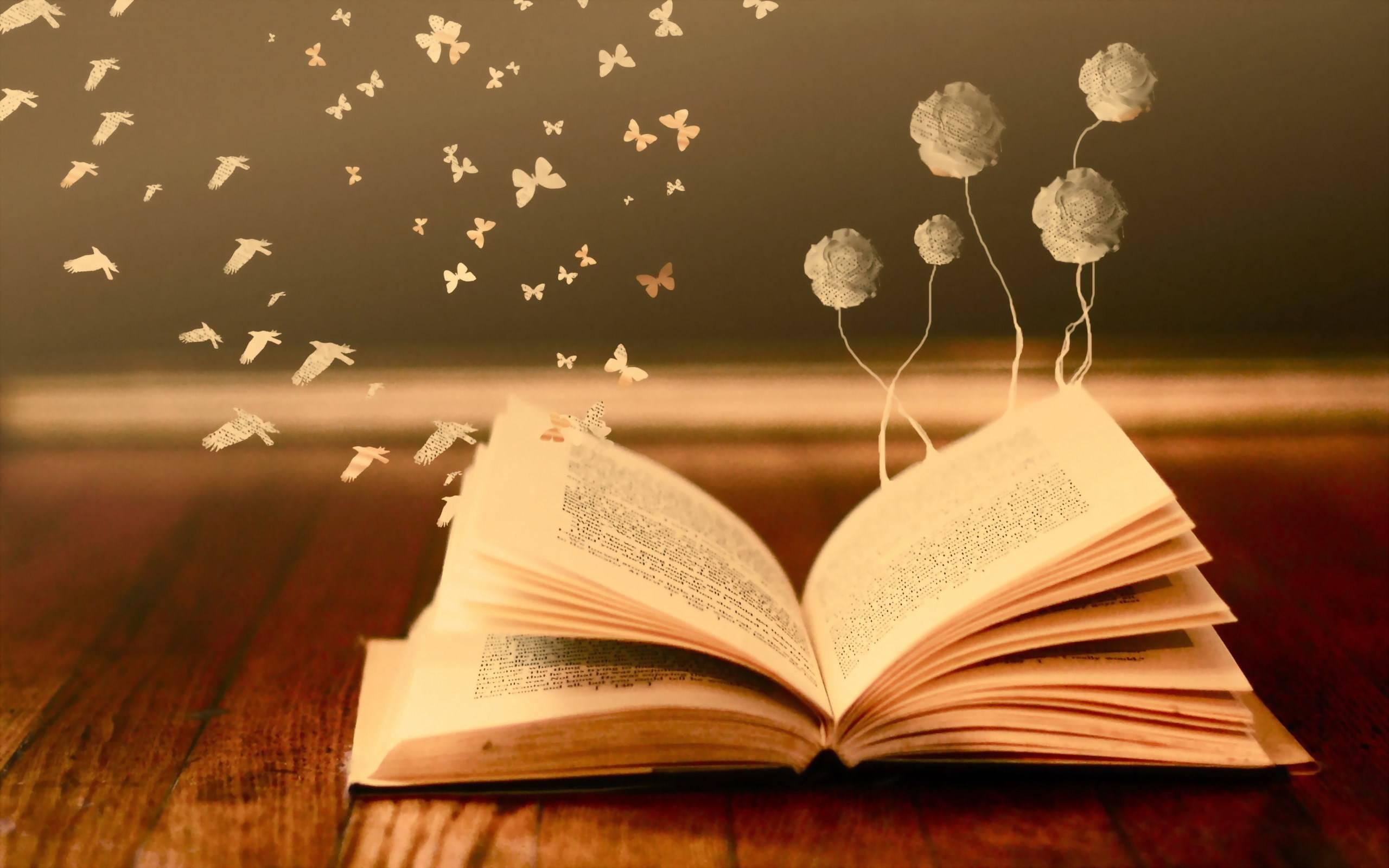 کتابی درباره کتابها
