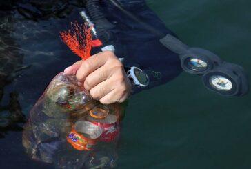 پاکسازی دریاچه آزادی + تصویر