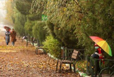 حال و هوای پاییز در قم + تصویر