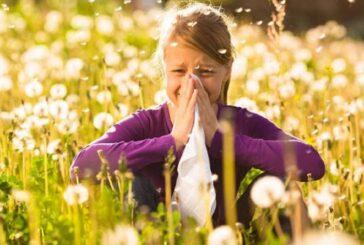 چگونه از چشمان خود در برابر تب یونجه محافظت کنیم؟