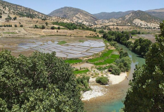 رودخانه های کهگیلویه و بویراحمد در انتظار فاجعه زیست محیطی