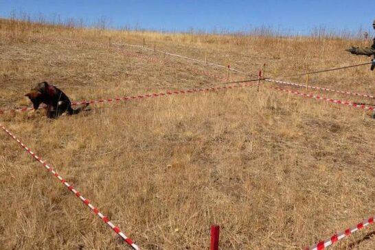 عملیات مین زدایی ترکیه در مرز ایران + تصویر